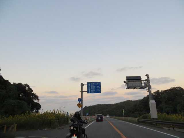 IMG_6591.jpg
