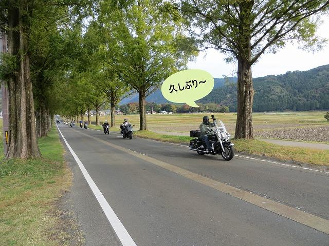 IMG_6852.jpg